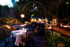 dining-bamboo-outdoor